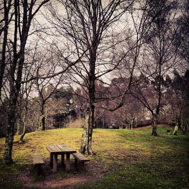 #Villaviciosa #Asturias