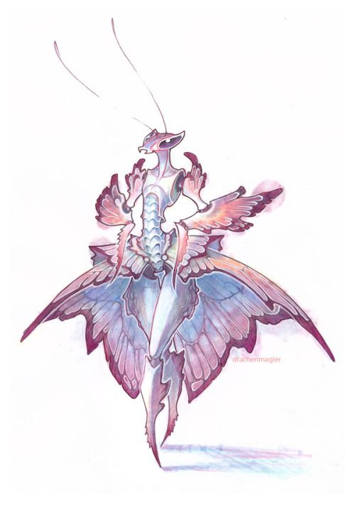 """drachenmagier: Orchid mantis~. Ball-gown-version. Bloomers would most likely be closer to the original creatures and I will have to draw one with that kind of """"clothing"""" later, but I liked the idea of a wide skirt too much to not instantly scribble it down. d:"""