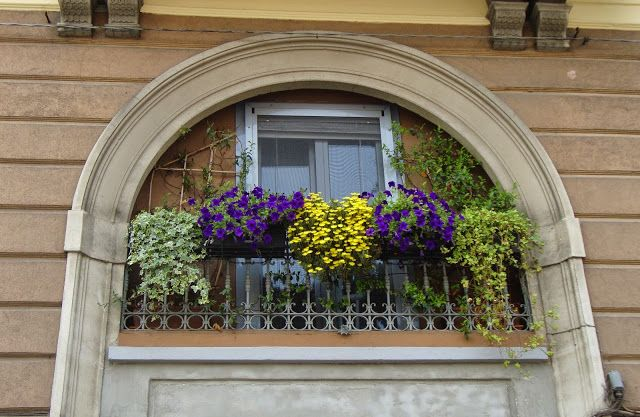 Piccoli balconi a Monza http://lefotodiluisella.blogspot.it/2015/06/micro-balconi-monzesi.html