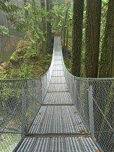 Cascade Falls Regional Park: suspension bridge in Mission, BC