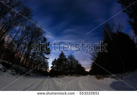 Night winter landscape of forest crossroads in the night