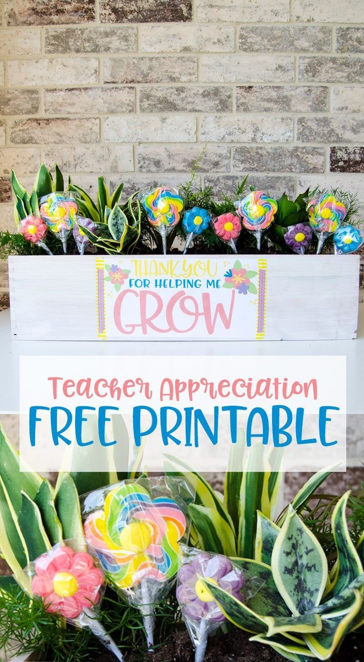 Classroom Thank You Ideas ~ Best images about gift ideas teacher appreciation