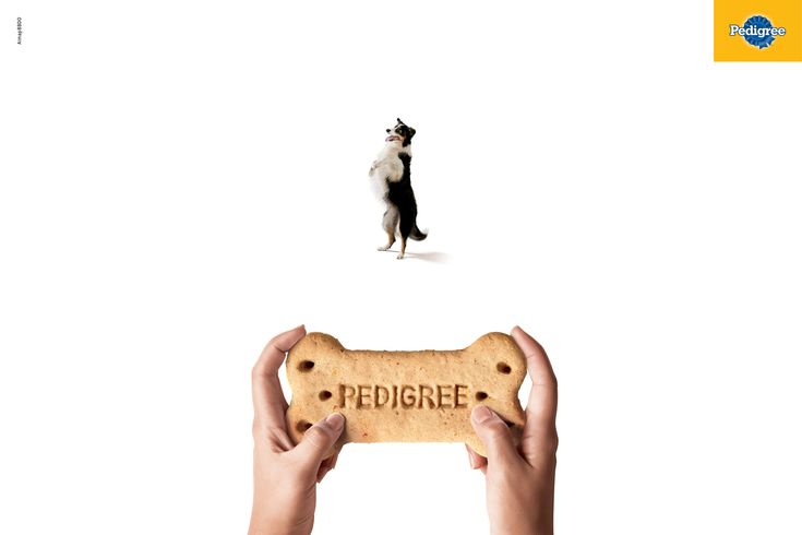 pedigree-gamepad-print-358629-adeevee.jpg (1701×1134)