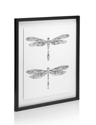 Conran Dragonflies Frame Wall Art | M&S