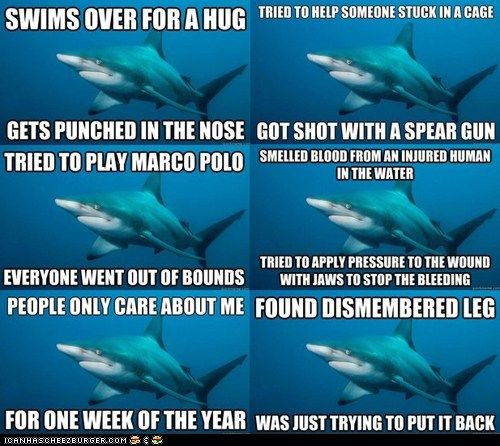 Meet Misunderstood Shark, a new meme for you to have fun with. Why are you running away? He just wants to be friends.