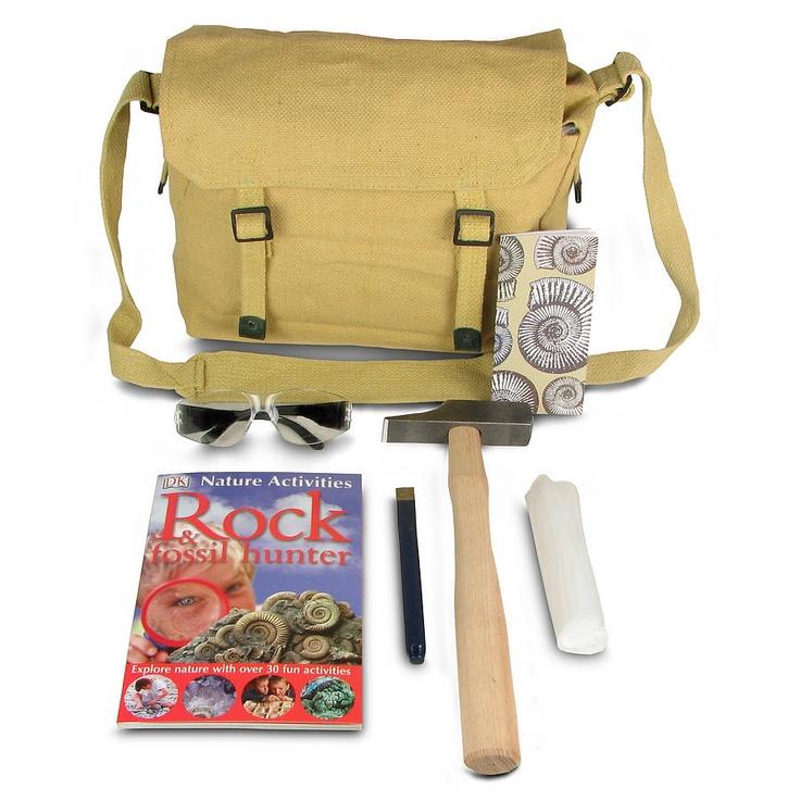 Fossil hunting kit fossil hunting 30 fun fun activities