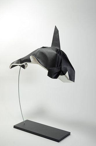 Killer Whale 2015 (2) | by ORI_Q