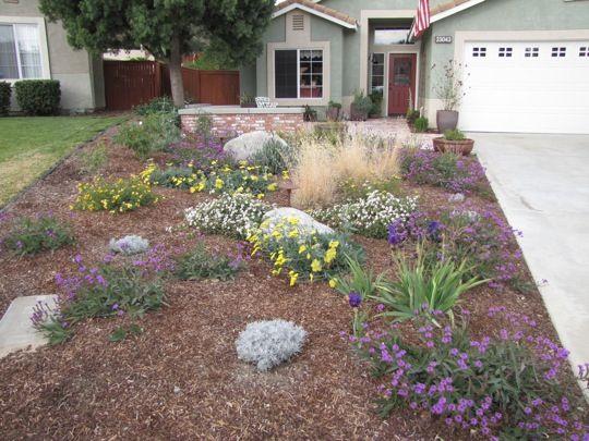 Best No Grass Yard Ideas On Pinterest No Grass Landscaping - Simple garden ideas no grass