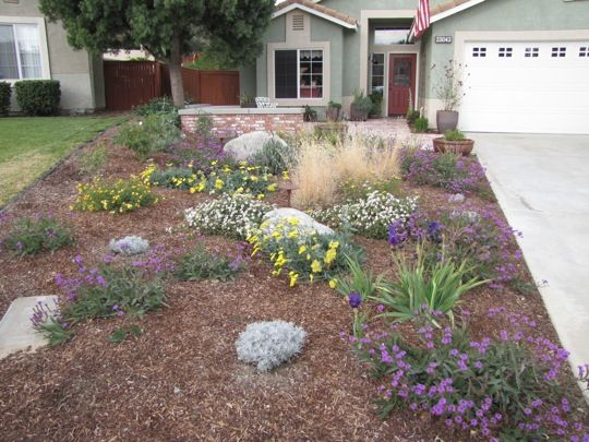 No grass lose the grass front garden and curb appeal for Garden designs no grass