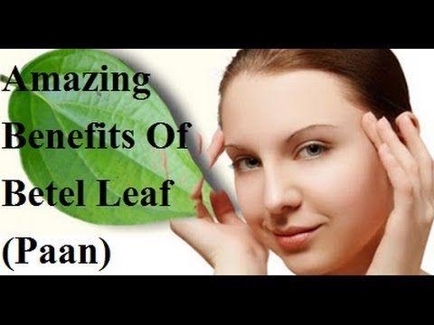 Amazing Benefits Of Betel Leaf (Paan) #पान के पत्ते का अनमोल फायदे #