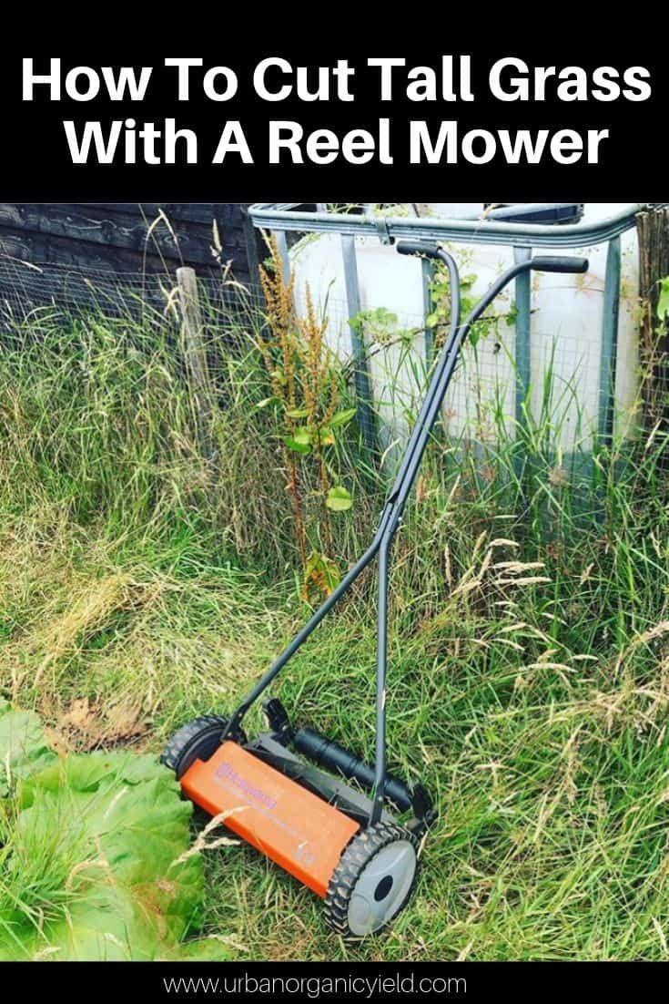 Pin On Urban Gardening