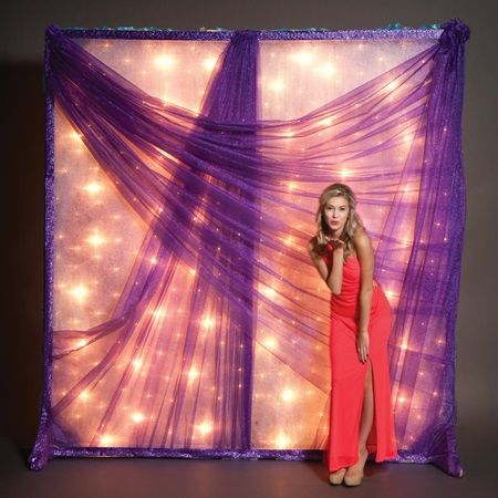 Purple Glitter Mesh Light Wall-photo op, photo wall, photo booth.  Perfect for a prom or formal event.