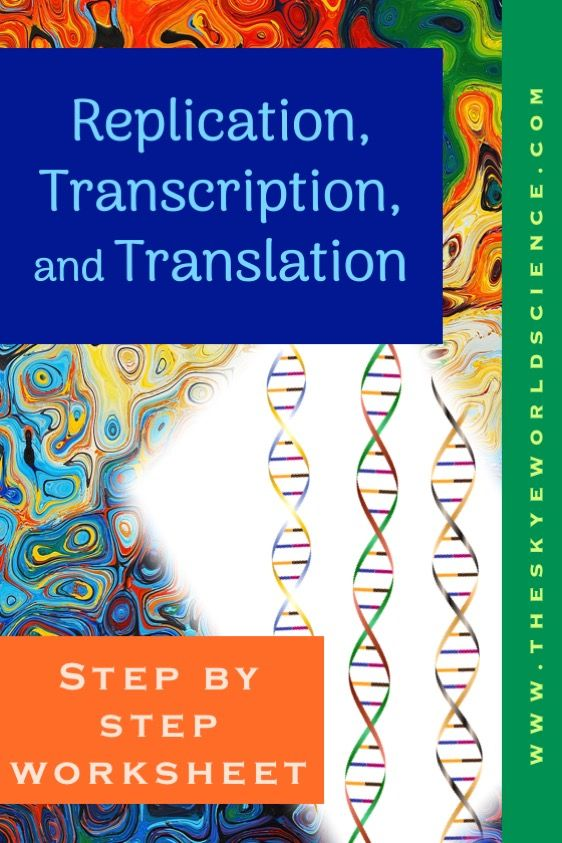 Replication Transcription And Translation Step By Step