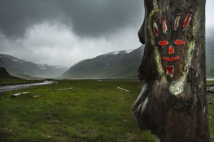 L'Islanda dei fiordi occidentali