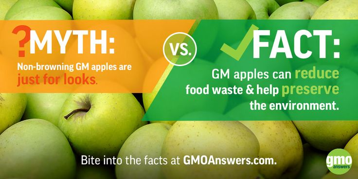 Bite into the facts at GMOAnswers.com