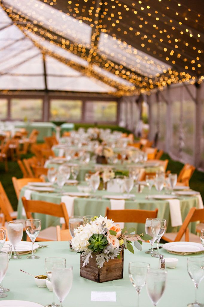 Cloud 9 denver botanic gardens wedding natural chairs with moss green linen and wood boxed for Denver botanic gardens wedding