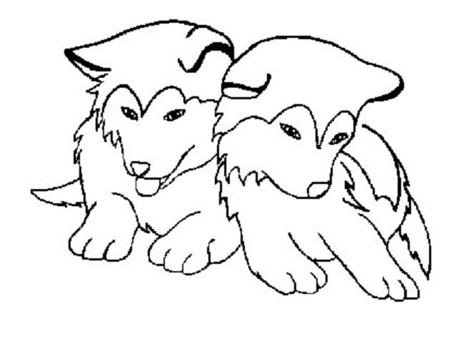coloring pages huskys - photo#3