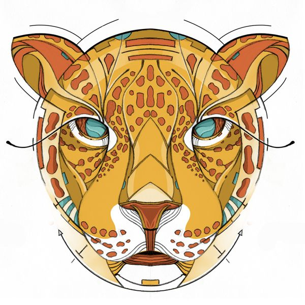 Dime Jaguar / Tell me Jaguar by Didier Vázquez, via Behance