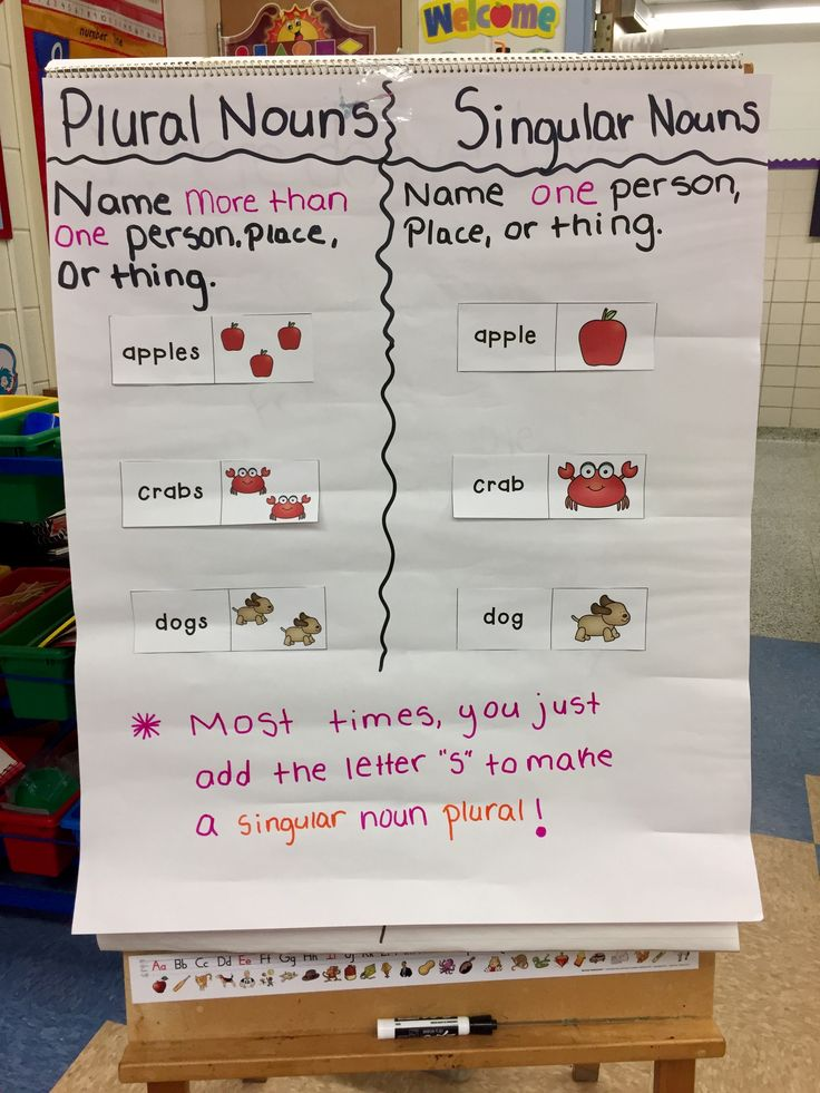 Singular and Plural Nouns Anchor Chart!