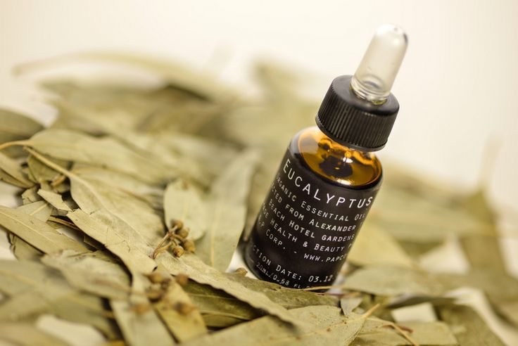 Eucalyptus Essential Oil - ideal to treat winter's viral diseases - regulates blood sugar levels - muscle relaxant - antibacterial - a potent toner. Order online at www.papcorp.com