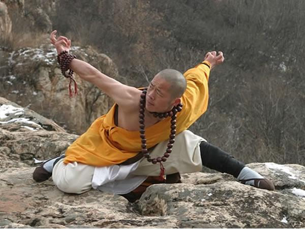 Kung Fu Eagle Style 1000+ images ab...