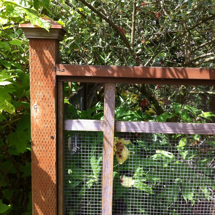 fence ideas from Portland Monthly 8 best