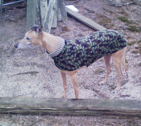 Mejores 72 imágenes de Crochet for dogs en Pinterest | Patrones de ...