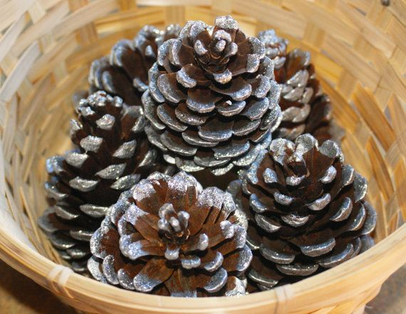 Silver Tipped Natural Pine cones Silver Glitter by Teakberry
