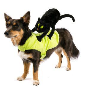 Top Paw Pet Halloween Black Cat Rider Costume | Costumes ...