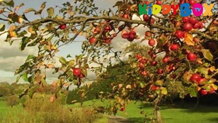 Vivaldi - VIER JAHRESZEITEN - Herbst / Autumn
