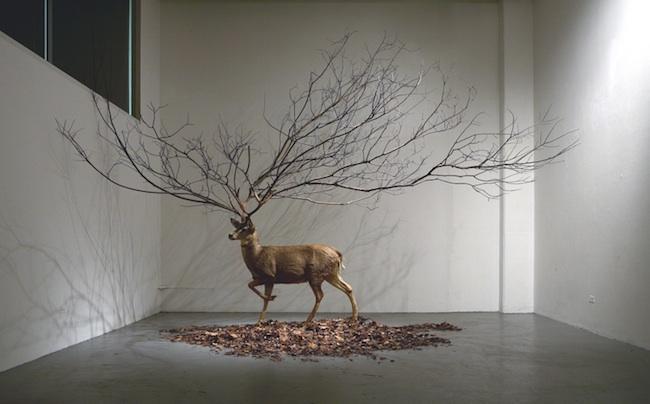 Myeongbeom Kim - Chicago, IL Artist - Installation Artists - Sculptors - Artistaday.com