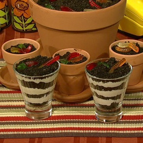 ! Great dessert idea! Pot -O- Dirt Dessert 4 cups crushed chocolate ...