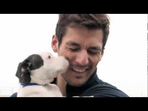 Mr Gandy himself around the corner at Battersea Cats & Dogs home! If only we knew!