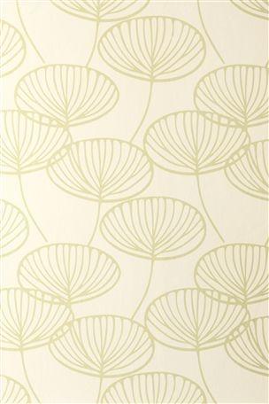 Seedpod wallpaper next home pinterest shops uk for Wallpaper next home
