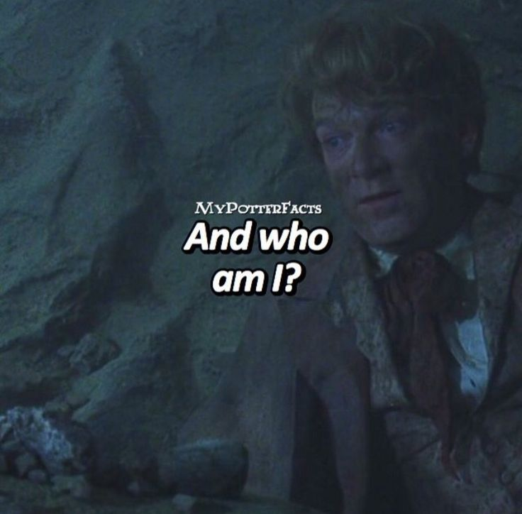#HarryPotter_TheChamberOfSecrets (2002) - #GilderoyLockhart