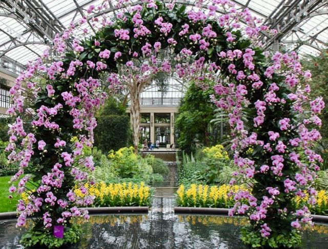 88 best images about gardens we love on pinterest for Landscaping longwood