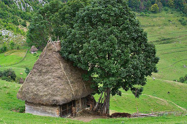 Old house in the Apuseni Mountains, Romania