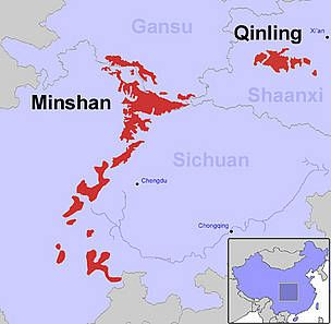Pandas live in around 20 isolated habitats (red) in Gansu, Sichuan and Shaanxi provinces, China. / ©: Nigel Allan / WWF