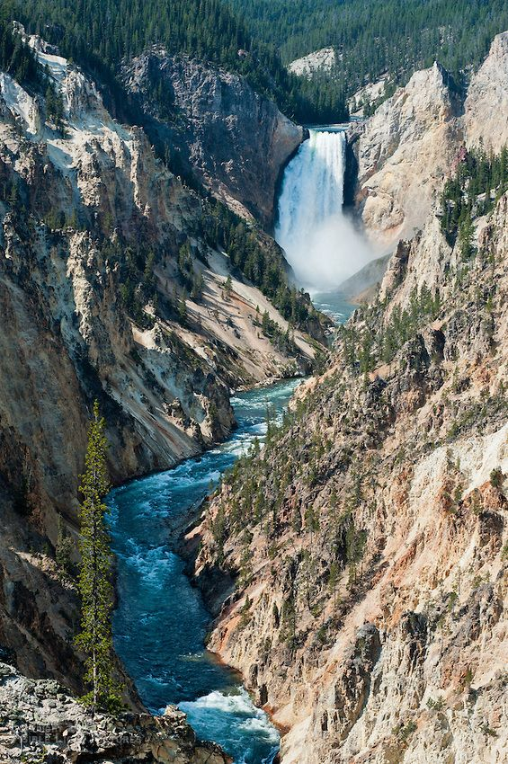 Yellowstone trip: Artist Point. I think it is the most stunning view in the park. There are a few other points right here were you can stand above large waterfalls.