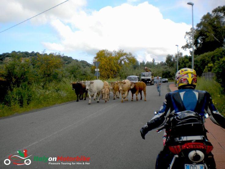 Italy-on-Motorbike-117