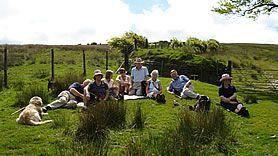 Wildlife Holidays in Somerset