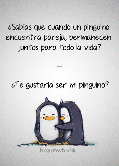 Mi Pinguino Siempre Vas A Ser Mi Pinguino Pinterest Amor