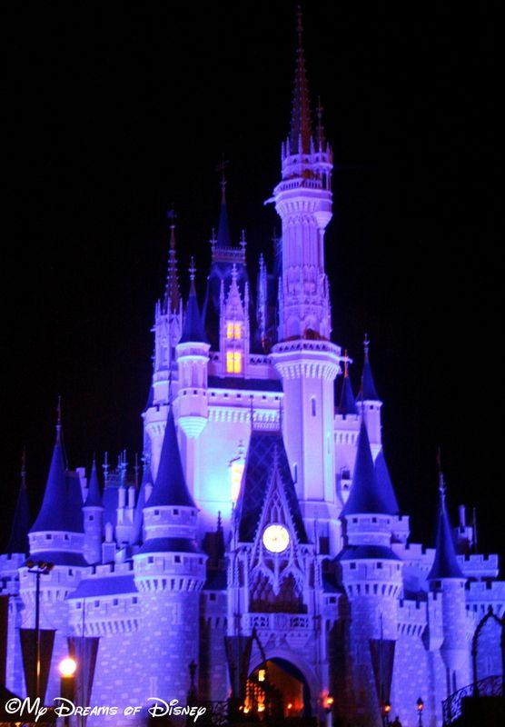 Magic kingdom fun for adults