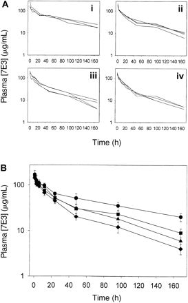 Blood Journal | Effects of intravenous immunoglobulin on platelet count and antiplatelet antibody disposition in a rat model of immune throm...