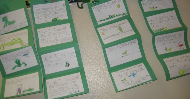 "Our Imagine It! story this week was called ""Hungry Hoppers.""  We learned all kinds of interesting facts about grasshoppers.  My students cre..."