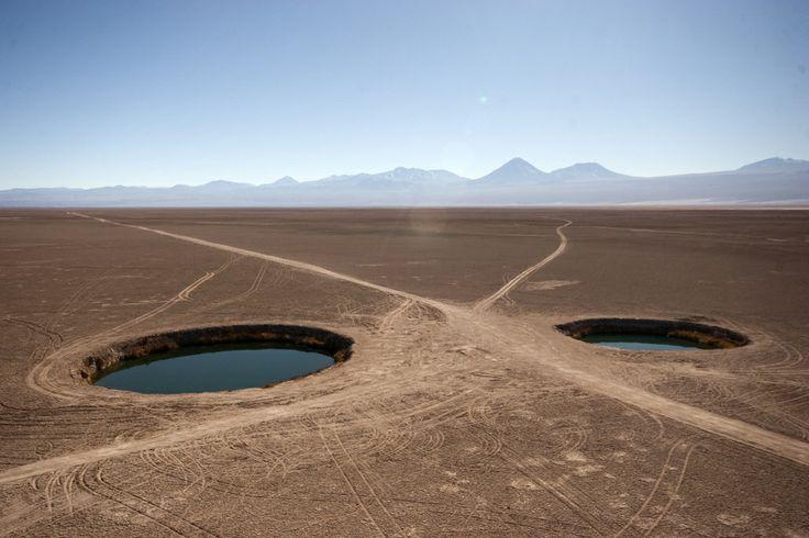 Ojos del Salar de Atacama