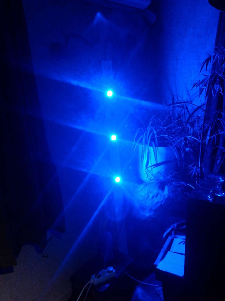 3 x 10W Royal Blue LED's & Royal Nepal male at the right side.