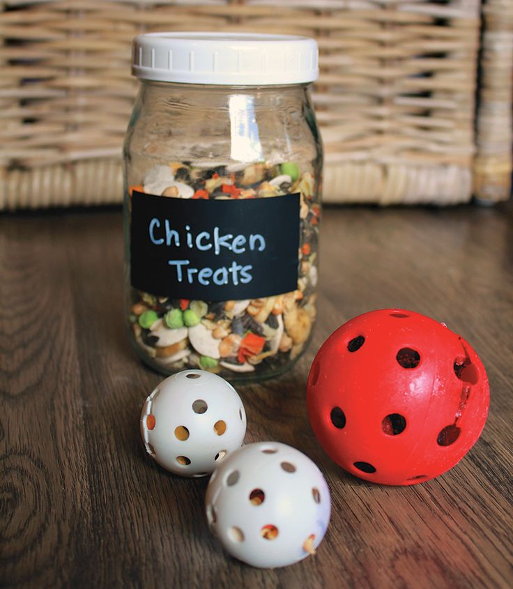 chicken treat balls