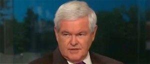 Newt Gingrich blasts Thomas Friedman on abortion, Biden on race, Rove on Todd Akin remarks