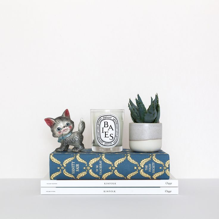 Diptyque candle and succulent